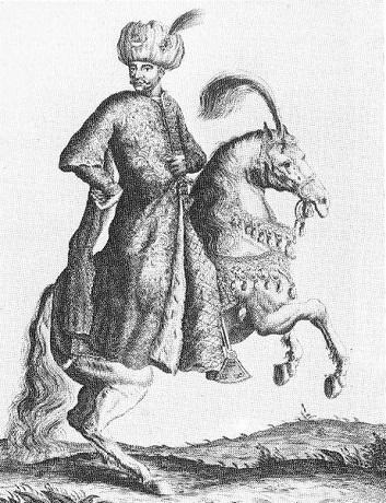 Mehmed_IV.