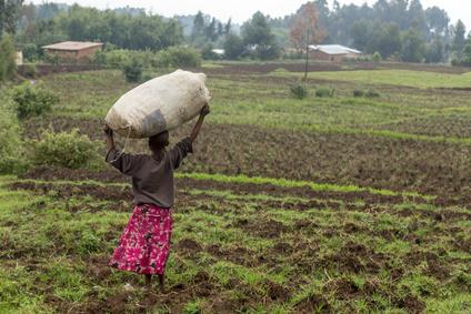 Little black rwandan girl standing in the field with a big crop sack on the head, Rwanda